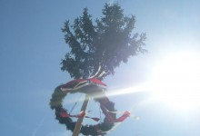 Maibaum (Maypole) &#8211; Germanic countries